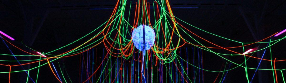 """Neuronengewitter und Geistesblitze – """"Ich denke, also bin ich – frei?"""" – Die Ruhe nach dem Sturm"""